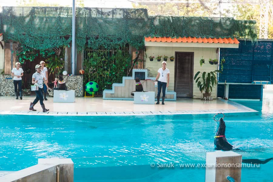 Koh Samui Aquarium and Tiger Zoo, Koh Samui, Thailand