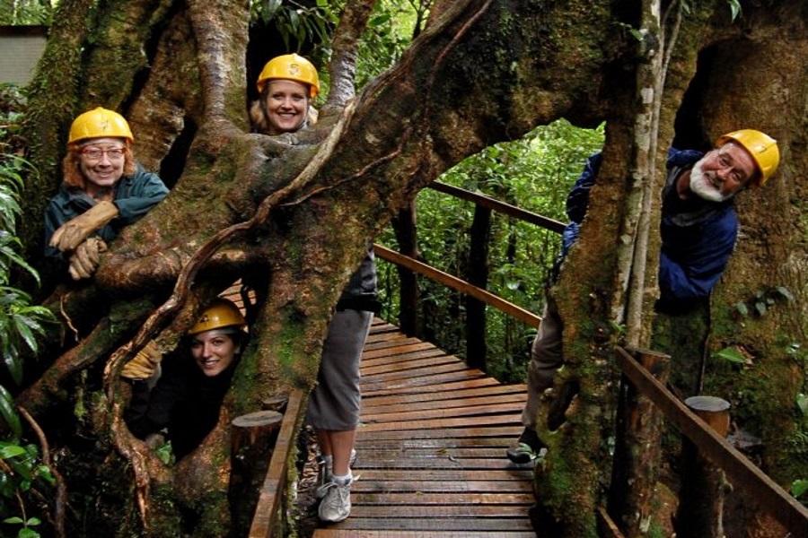 Canopy adventure, Koh Samui, Thailand