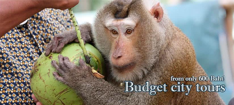 Budget city tour, Koh Samui