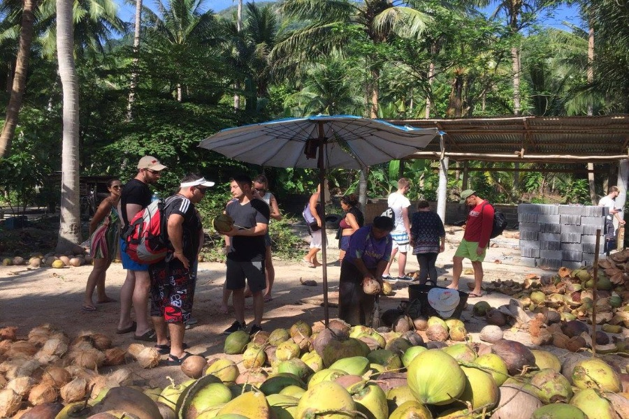 Half day safari from Koh Phangan, Koh Samui, Thailand