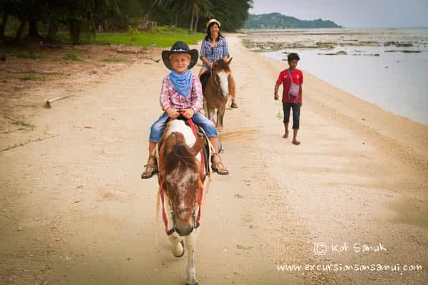 Beach and Jungle Horseback Riding, Koh Samui, Thailand