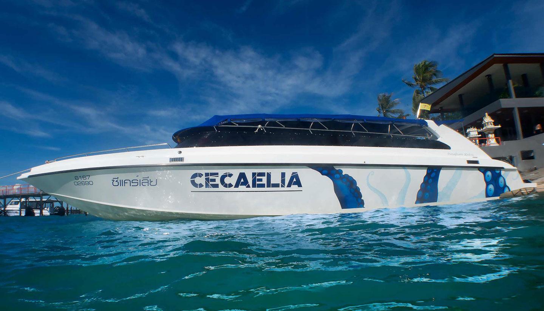 "Speedboat ""Cecaelia"", Koh Samui, Thailand"