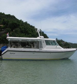 Speedboat Sting, Koh Samui